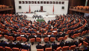 Meclis, hayvan hakları için mesai yapacak